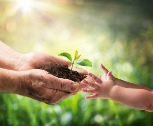 Für die Umwelt: Mann reicht Pflanze an Kind