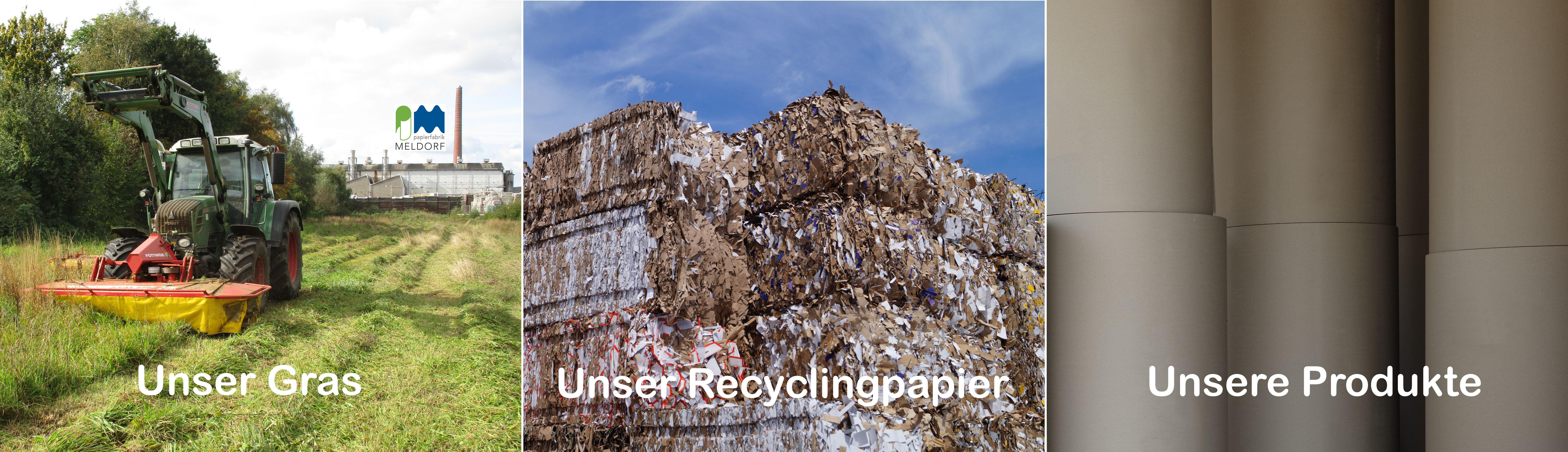 Header Unser Gras Unser Recyclingpapier Unsere produkte Papierfabrik Meldorf