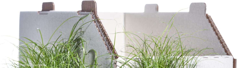 Header Papierfabrik Meldorf Stapelsteigen aus Doppelwelle Graspapier
