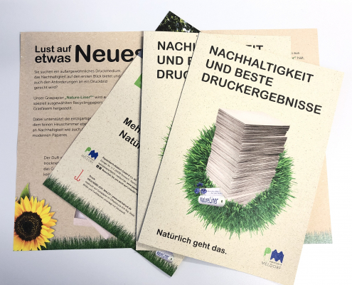 Drucken auf Graspapier Flyer